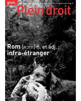 Rom, n. et adj. : infra-étranger (ebook PDF)